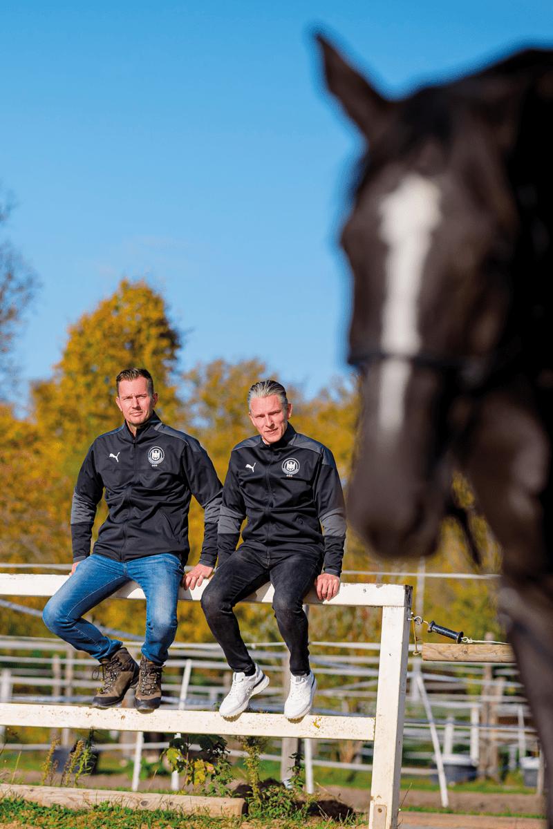Schulze Tönnies Pferde